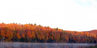 Autumn Colors on Dog Pond Road