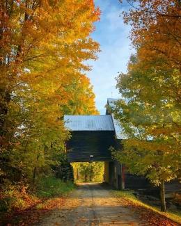 Autumn in Woodbury
