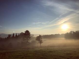 Foggy Woodbury