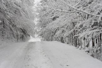 Winter Storm, Woodbury Vermont